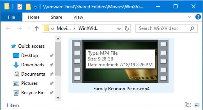 winx hd video converter output file - size and format