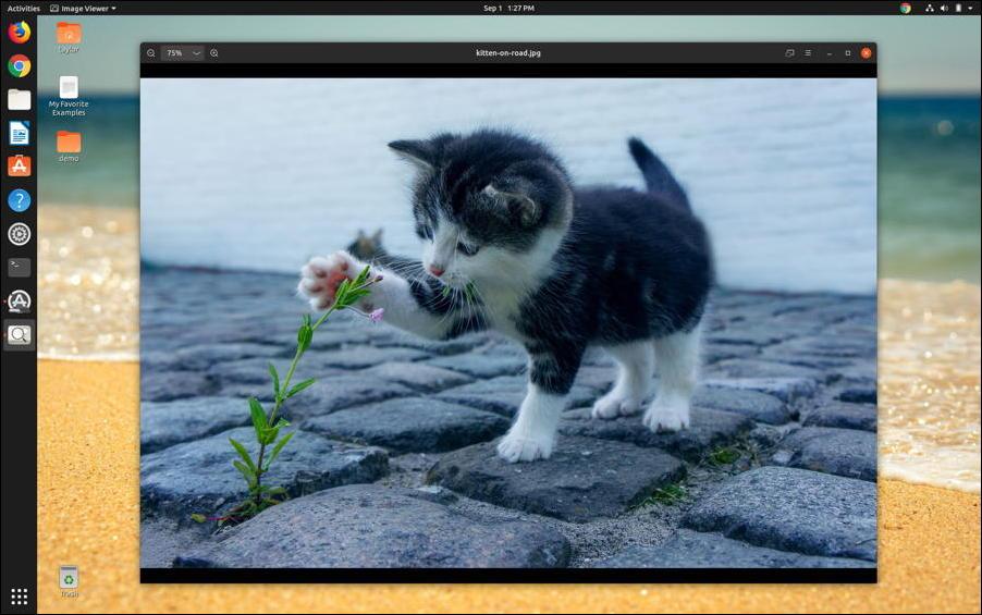 linux - image viewer - ubuntu kitten