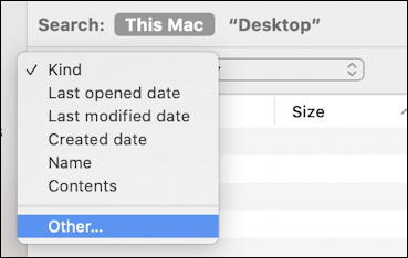 macos x mac smart folder - primary search criteria