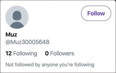 bogus twitter account example