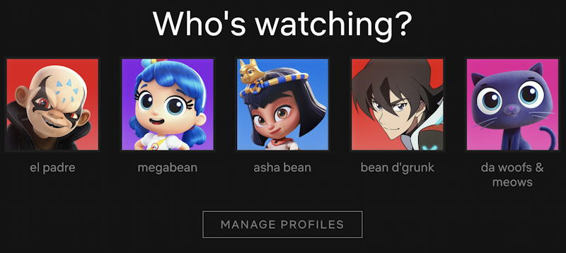netflix profile - who's watching
