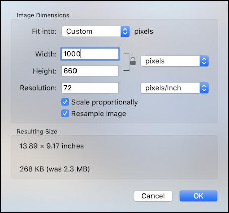 mac preview app - resize photo picture for online use