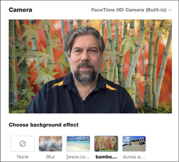 skype on mac - skype settings preferences video audio - bamboo forest