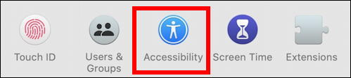 mac macos x - make cursor larger bigger - accessibility settings preferences