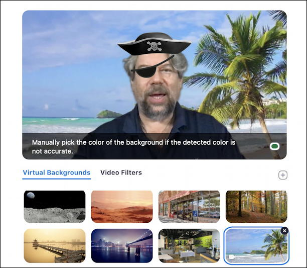 zoom video filters - pirate hat eye patch palm trees