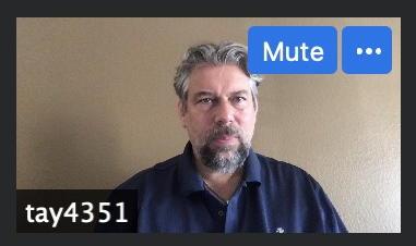 zoom meeting - mute / change name / pin