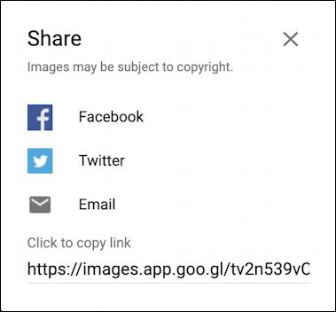 google image search - share image