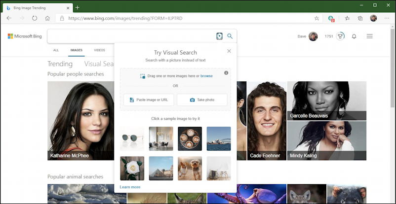 bing image search - upload image file