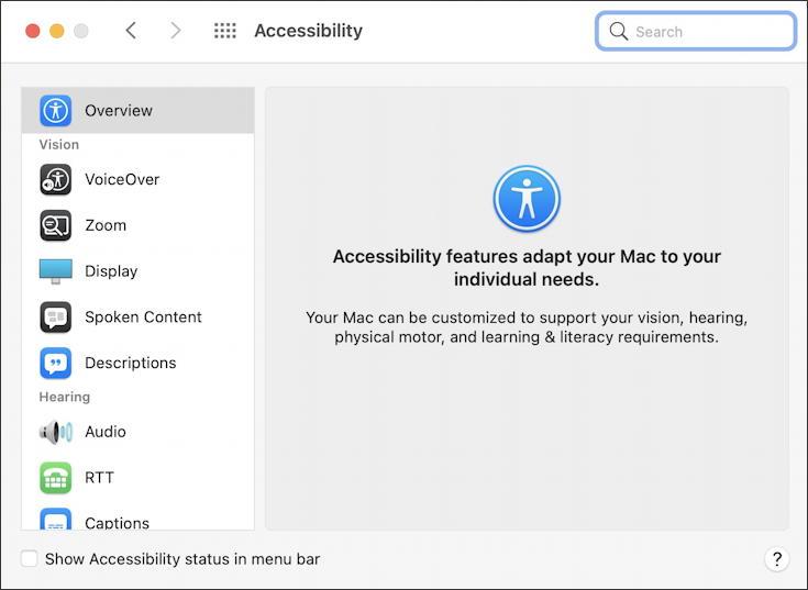 macos 11 big sur - accessibility - main window