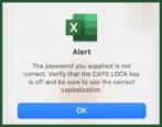microsoft excel xls spreadsheet open password protect