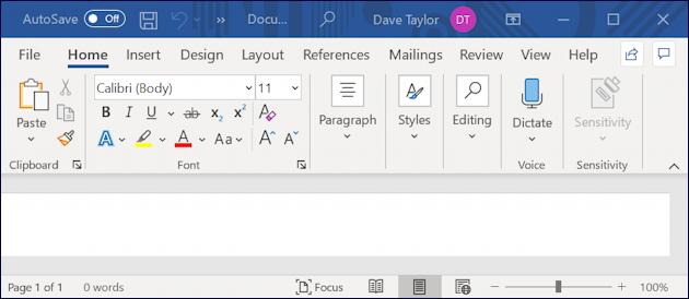 microsoft word for windows - blank document