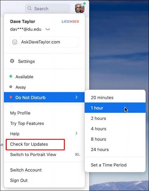 zoom main menu - set as busy