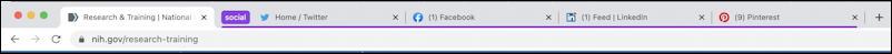 google chrome - tab groups - grouped into purple group