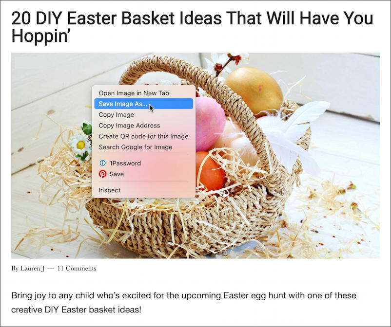 diy easter basket ideas photo on page - save image as