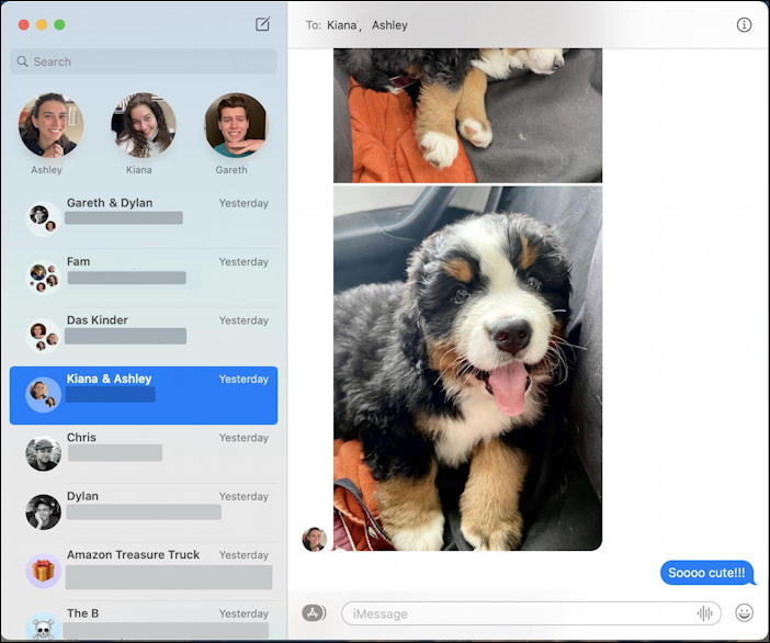 mac macos messages - save photo - pic of dog puppy