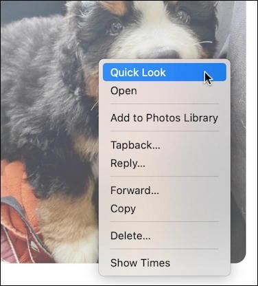 mac macos messages - save photo - context menu