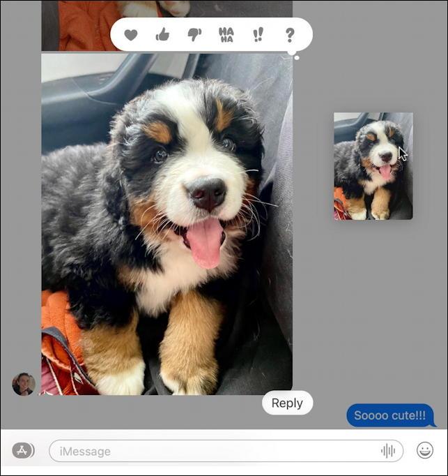 mac macos messages - save photo - click and drag desktop