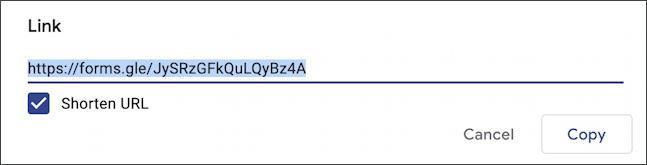 google forms docs - new form survey questionnaire - shortened url