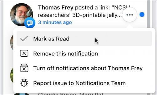 facebook notifications window - individual notification menu