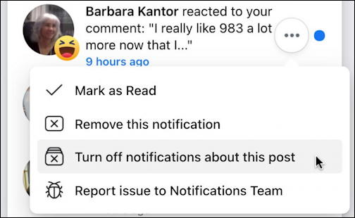 facebook notifications window - reaction to comment