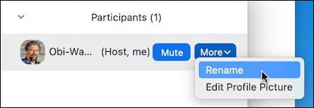 zoom mac - main window - participants - hidden buttons