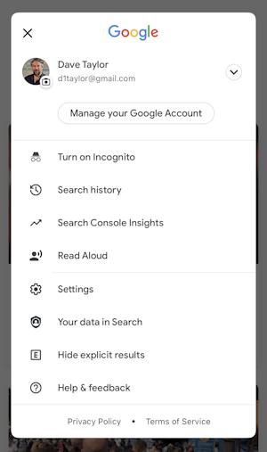 google search iphone ios14 - settings menu