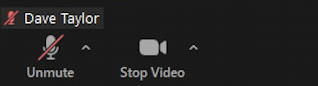zoom you're muted button icon