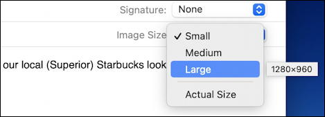 apple mail mac - photo image size options small medium large actual size